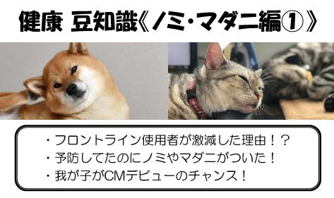 健康豆知識(ノミ・マダニ関連)