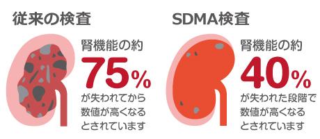 腎機能検査の検出率